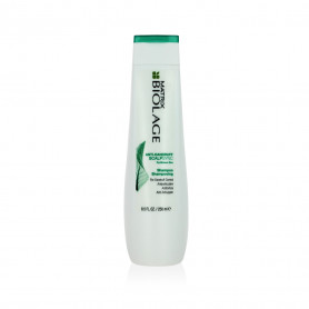 BIOLAGE SCALP SYNC SHAMPOING ANTI PELLICULAIRE 250 ML 2014