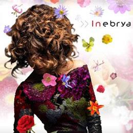 Inebrya, optez pour des cheveux en pleine santé