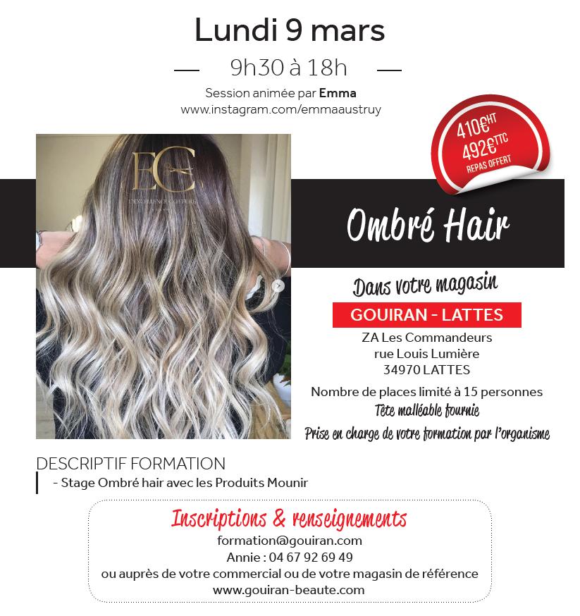 Formation ombré hair